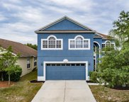 8718 Sandy Plains Drive, Riverview image
