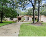12707 Oak Tree Drive, Hudson image