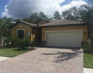 4240 Raffia Palm Cir, Naples image