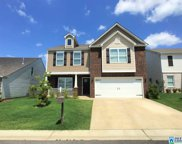 529 Chesser Reserve Way, Chelsea image