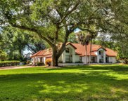 3352 Wax Berry Court, Windermere image