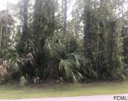 40 Postman Lane, Palm Coast image