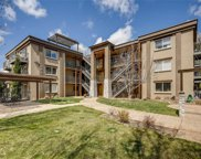 195 South Pennsylvania Street Unit 301, Denver image
