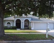 4428 Winding River Drive, Valrico image