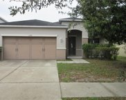 11244 Running Pine Drive, Riverview image