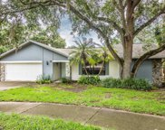 15 Summit Lane, Safety Harbor image
