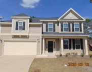 39 Crystal Springs Court, Columbia image