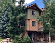 1100 Natures Lane Unit 1, Steamboat Springs image