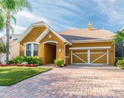 11523 Meridian Point Drive, Tampa image