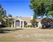 11431 Dwights Road, Clermont image