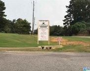 355 Gray Fox Rd Unit 58, Springville image