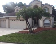 6343 Rock Creek Circle, Ellenton image