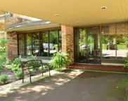 301 Lake Hinsdale Drive Unit #307, Willowbrook image
