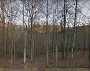 Outcrop Trail, Landrum image