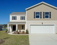 48 Black Pearl Court, Pawleys Island image