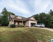1128 Baylor Ct, Pell City image