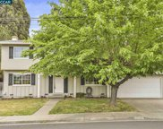 481 Bifrost Ave, Pleasant Hill image