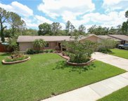 4214 Briarberry Lane, Tampa image