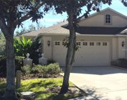 19107 White Wing Place, Tampa image