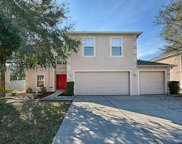 2651 Palmetto Ridge Circle, Apopka image