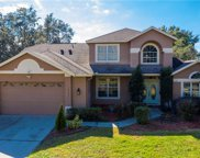 10158 Pointview Court, Orlando image