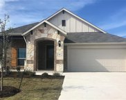 166 Coral Berry Dr, Buda image