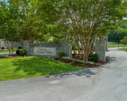 1125 Natchez Valley Ln, Franklin image