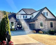 918 Angel Trace Court, Inman image