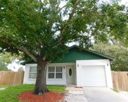 2665 Langstaff Drive, Palm Harbor image