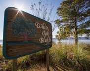 249 White Oak Bluff Road, Stella image