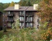 1081 Cove Road, Sevierville image