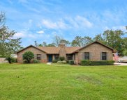 1457 FRUIT COVE FOREST RD S, St Johns image