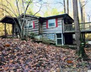 3125 Cool Creek Road, Sevierville image