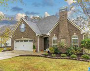 132 Willow View Ln, Chelsea image