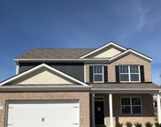 2088 Sunflower Drive 454, Spring Hill image