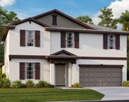 11915 Wild Daffodil Court, Riverview image