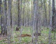 Thunder Trail, Petoskey image