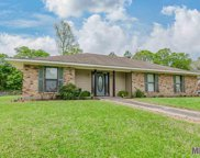 15711 Paint Ave, Greenwell Springs image