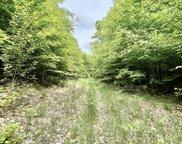 Mccormick Lake Road Unit 43.28 acres, Atlanta image