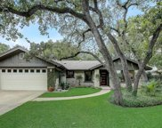 10406 Mourning Dove Drive, Austin image