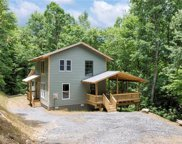 60  Will Campbell Road, Swannanoa image