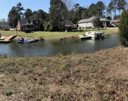 103 Long Point Drive, Chapin image
