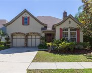 11512 Meridian Point Drive, Tampa image