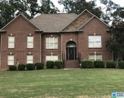 7784 Eagle Dr, Mccalla image