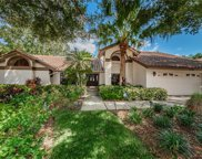 2381 Parkstream Avenue, Clearwater image