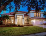 17829 Green Willow Drive, Tampa image