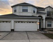 11353 Callaway Pond Drive, Riverview image