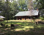 8998 W County Line Road, Howard City image