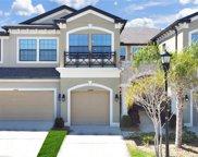 11604 Crowned Sparrow Lane, Tampa image