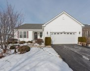 1586 Muskegon Way, Romeoville image